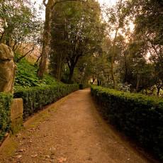 Villa_Gregoriana_Tivoli_0059