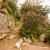Villa_Gregoriana_Tivoli_0061